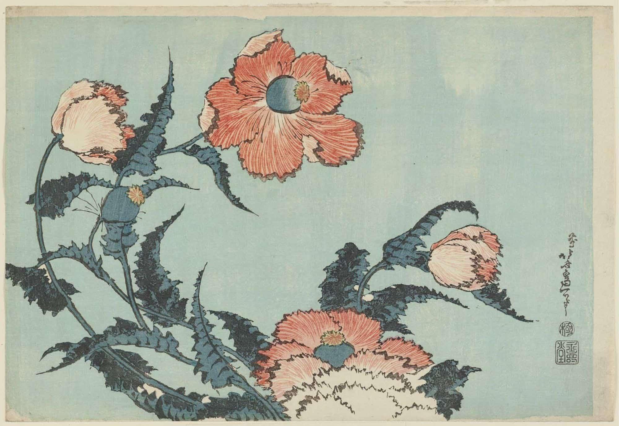 Poppies by hokusai, kacho-ga