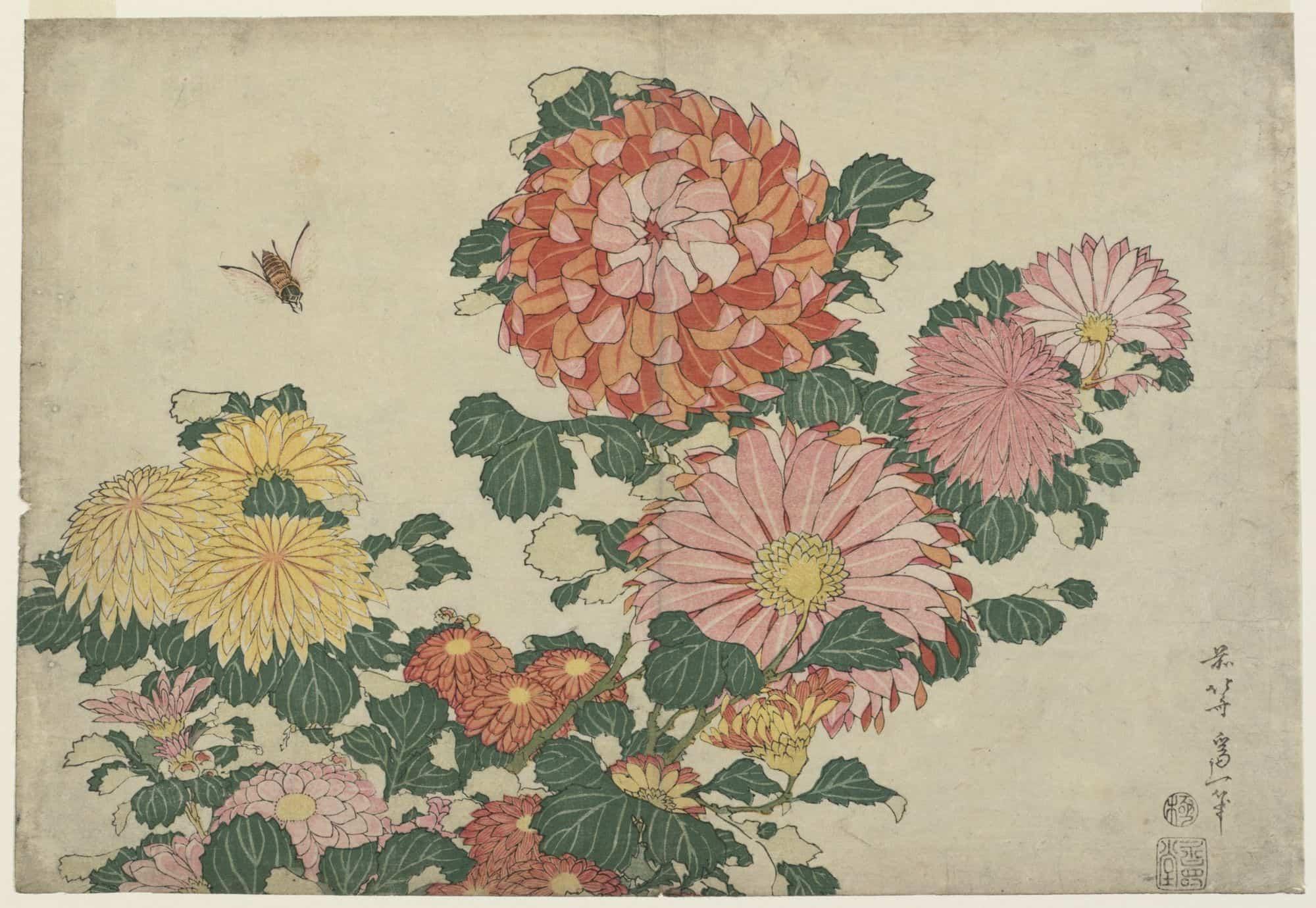 Chrysanthemums and Horsefly by hokusai, kacho-ga