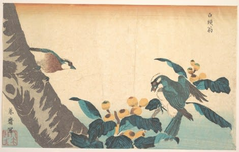 Birds and Flowers, Kuwagata Keisai, c. Edo, kacho-e