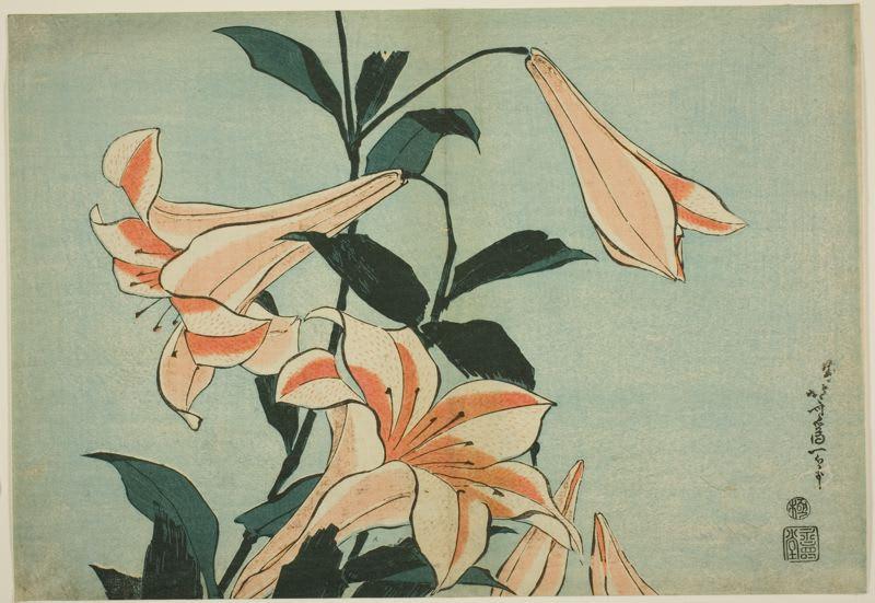 Lilies by hokusai, kacho-ga