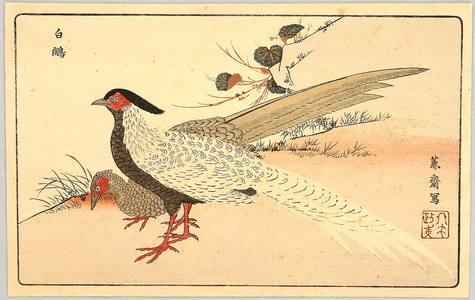 Two Exotic Birds, Kitao Masayoshi, c. 1800, kacho-e
