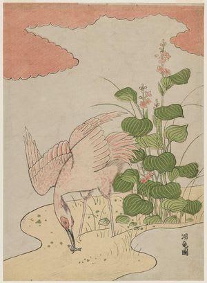 Egret and Mizu-aoi, Isoda Koryusai, c. Edo, kacho-e