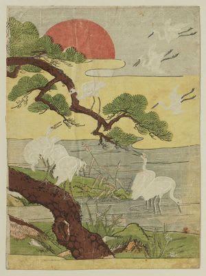 White Herons, Pine Tree, and Rising Sun, Isoda Koryusai, c. Edo, kacho-e