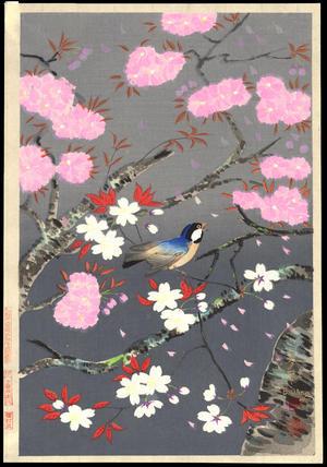 Bird and cherry blossoms, Bakufu, ohno, c.1950, kacho-e