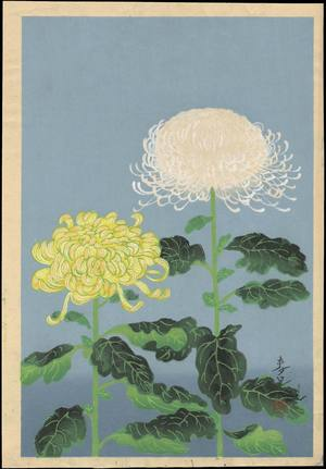 Chrysanthemum (Yellow and White), Bakufu ohno, c.1950, kacho-e