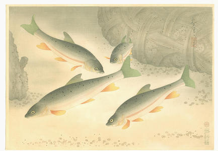 Dace, Bakufu Ohno, c.1940, kacho-e