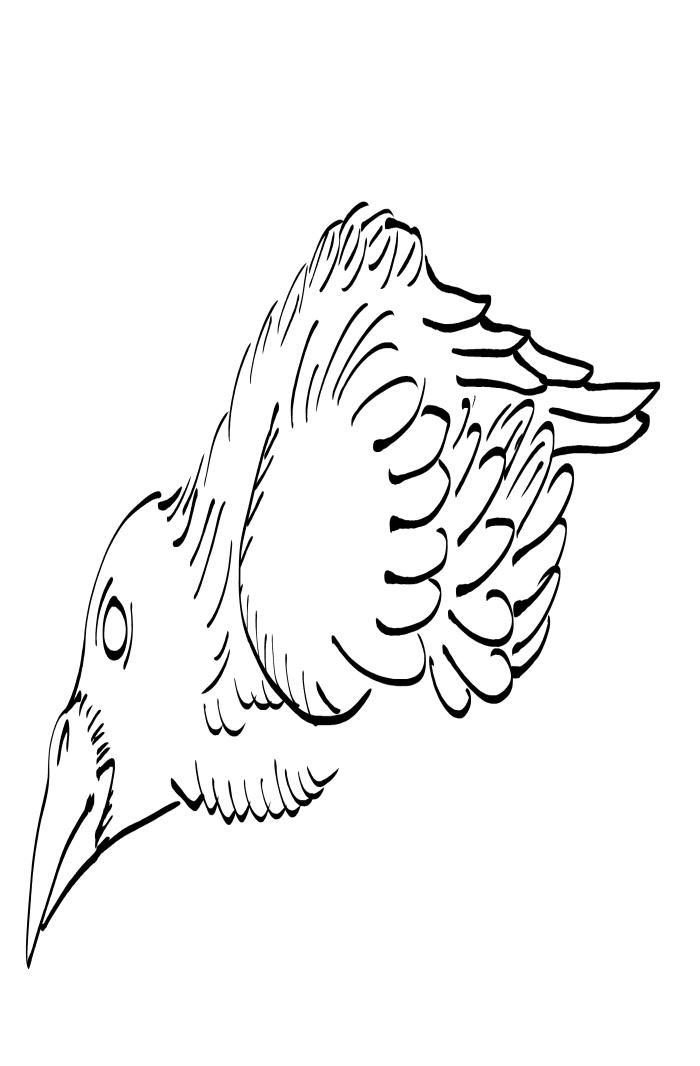 Crow Raven -ukiyo-e BlackandWhite5-(からす) by RedSparkle (11-2019)