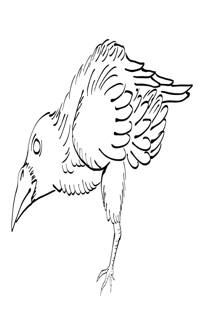 Crow Raven -ukiyo-e BlackandWhite7-(からす) by RedSparkle (11-2019)