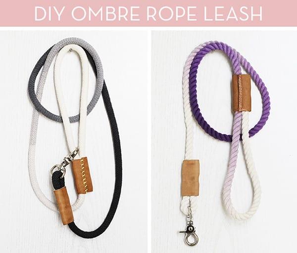 Dip-Dyed Rope Dog Leash / Capree
