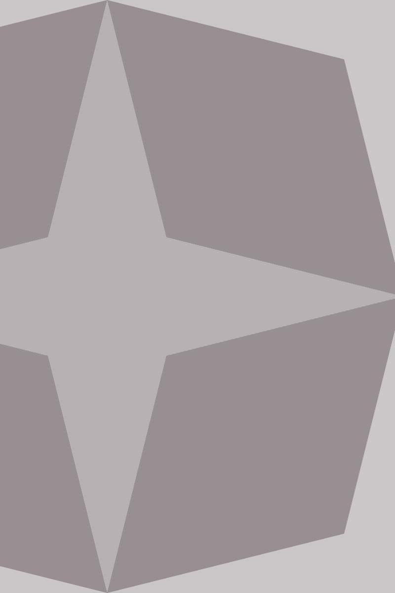 Geometric Pattern: Diamond Star: Ghost / Red Wolf