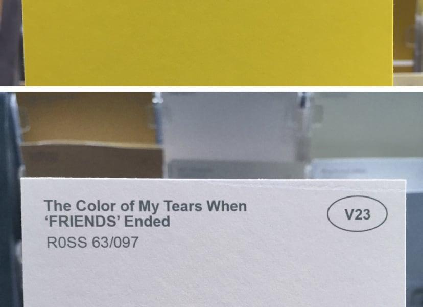 Renamed paint colours / Obvious Plant