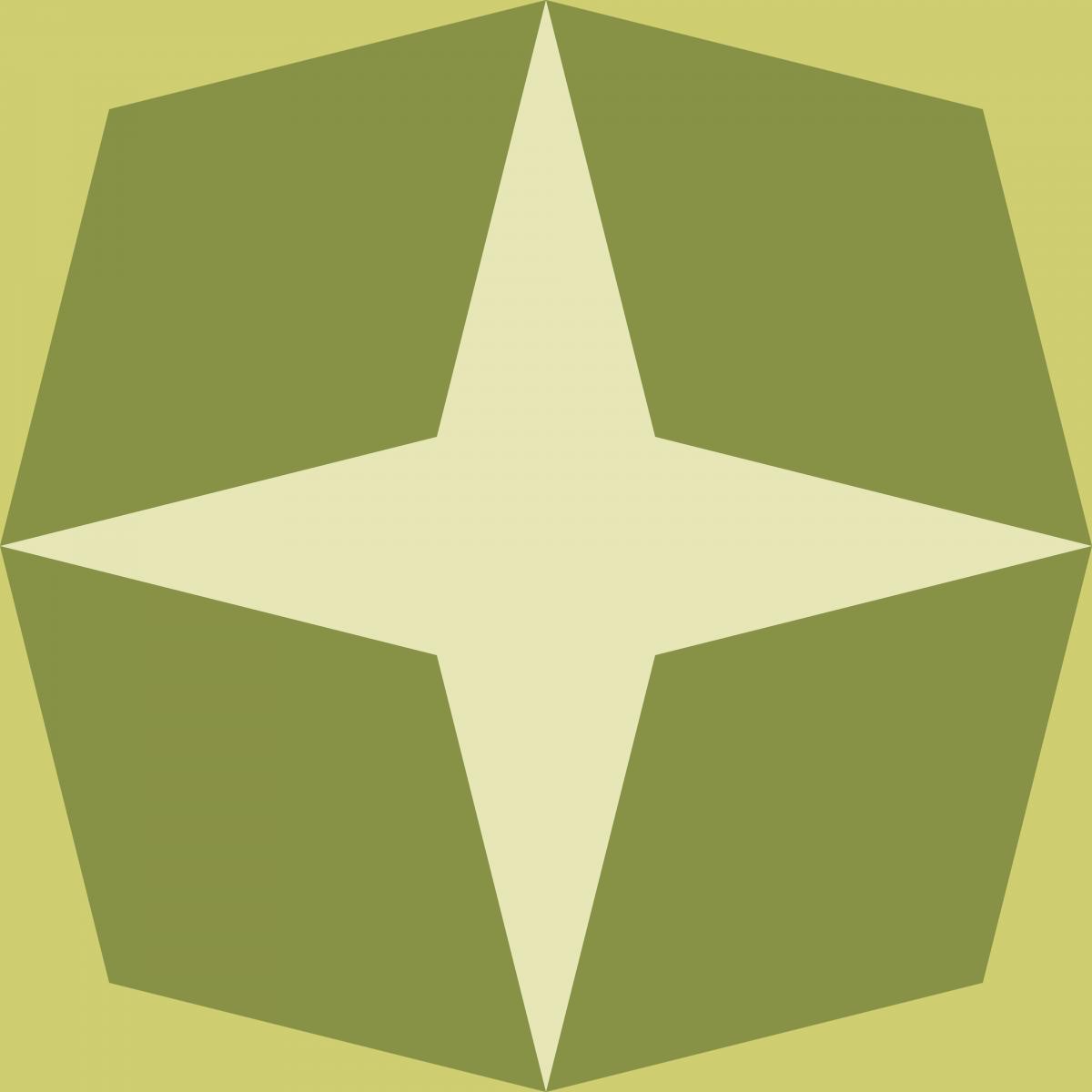 Geometric Pattern: Diamond Star: Brunch / Red Wolf