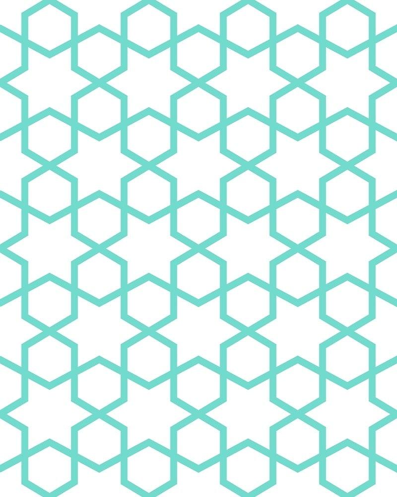 Geometric Pattern: Star Hexagon / Red Wolf