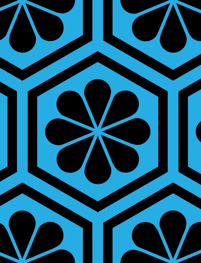 Geometric Pattern: Hexagon Flower: Black/Colour / Red Wolf