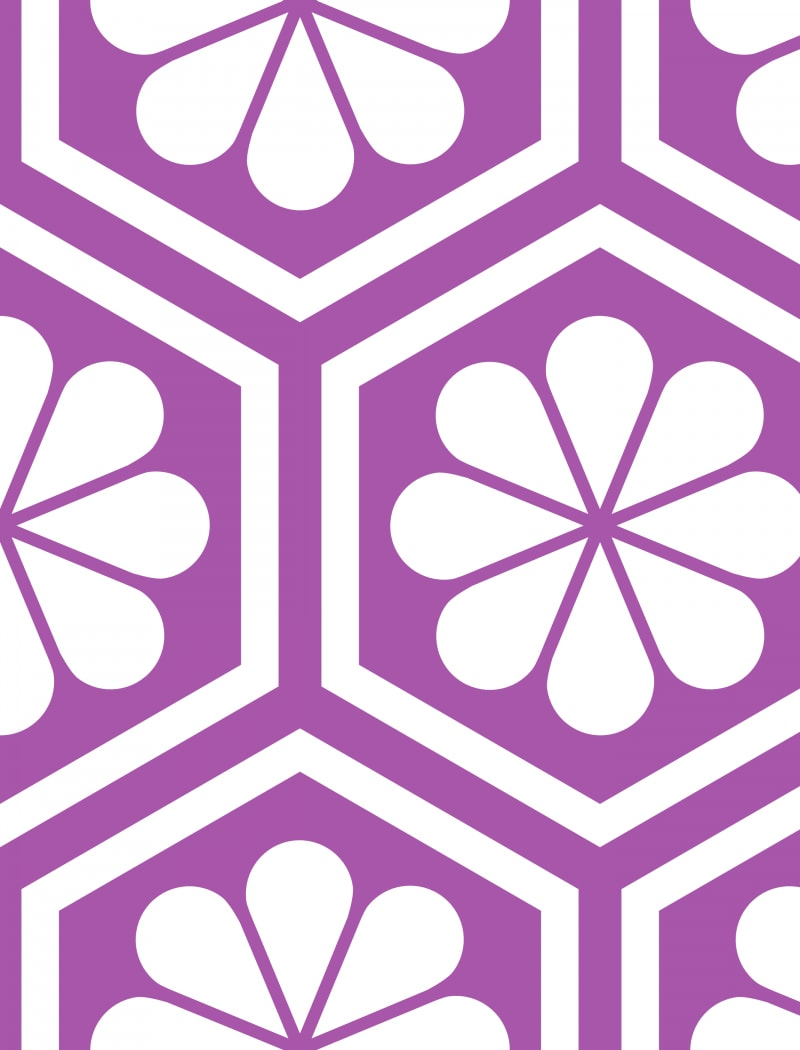 Geometric Pattern: Hexagon Flower: White/Colour / Red Wolf