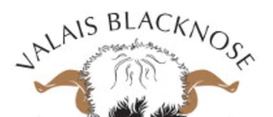 Valais Blacknose Sheep Society