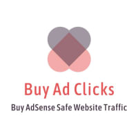 Buy Website Traffic - Get Targeted Quality Traffic