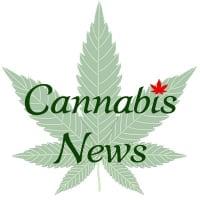 Cannabis News 📰