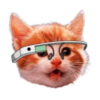 Product Hunt 😸