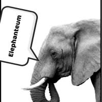 elephanteum 🐘