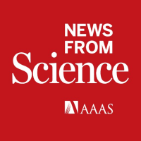 News from Science