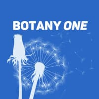Botany One