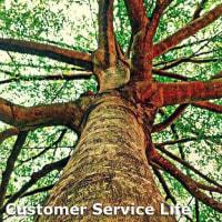 CustomerService Life