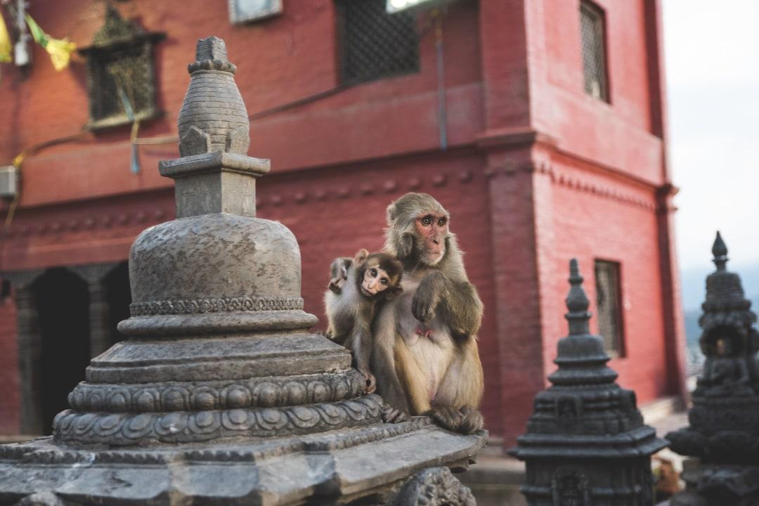 The Magical Beauty Of Kathmandu