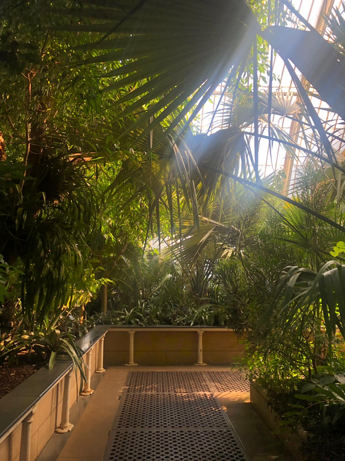 All the jungle vibes!