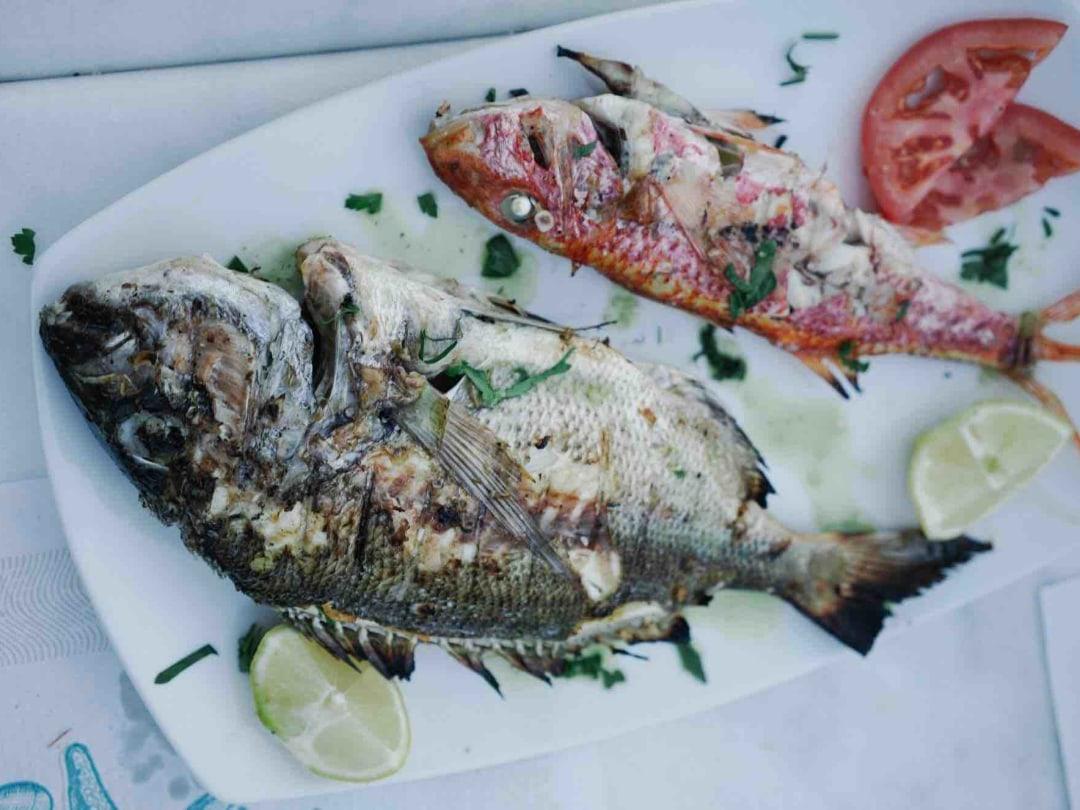 Best Seafood in Koufonisia, Greece