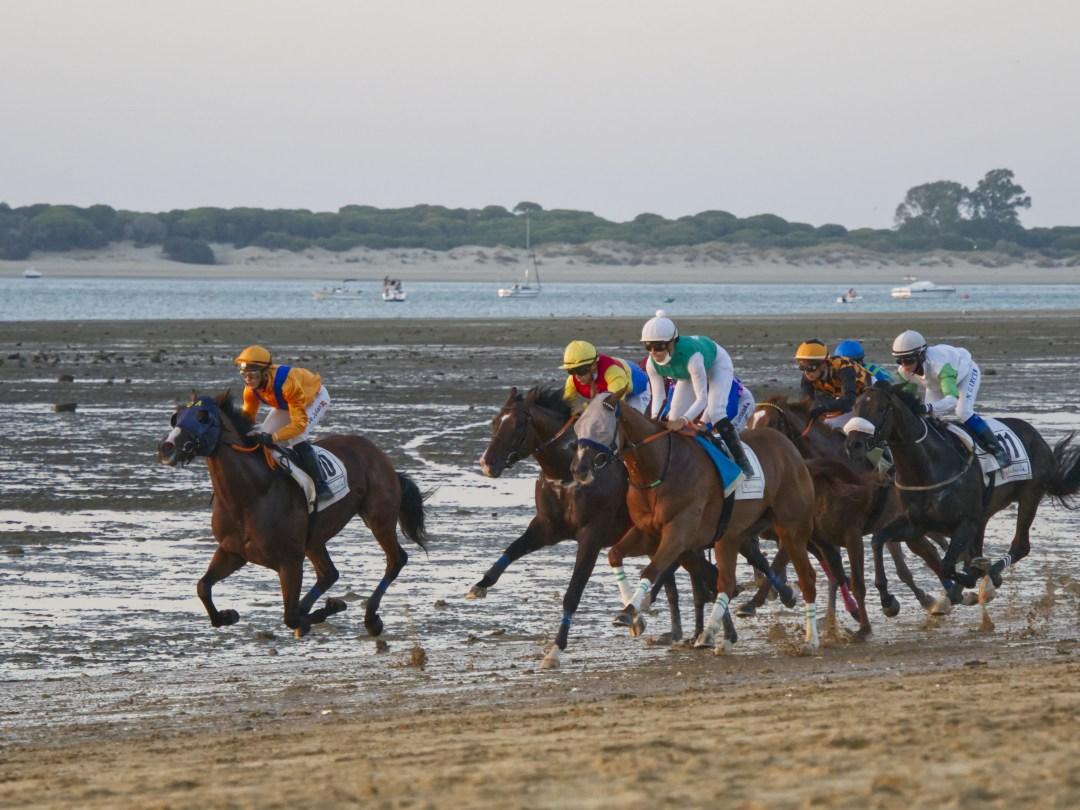 Horse Races at Sanlúcar de Barrameda