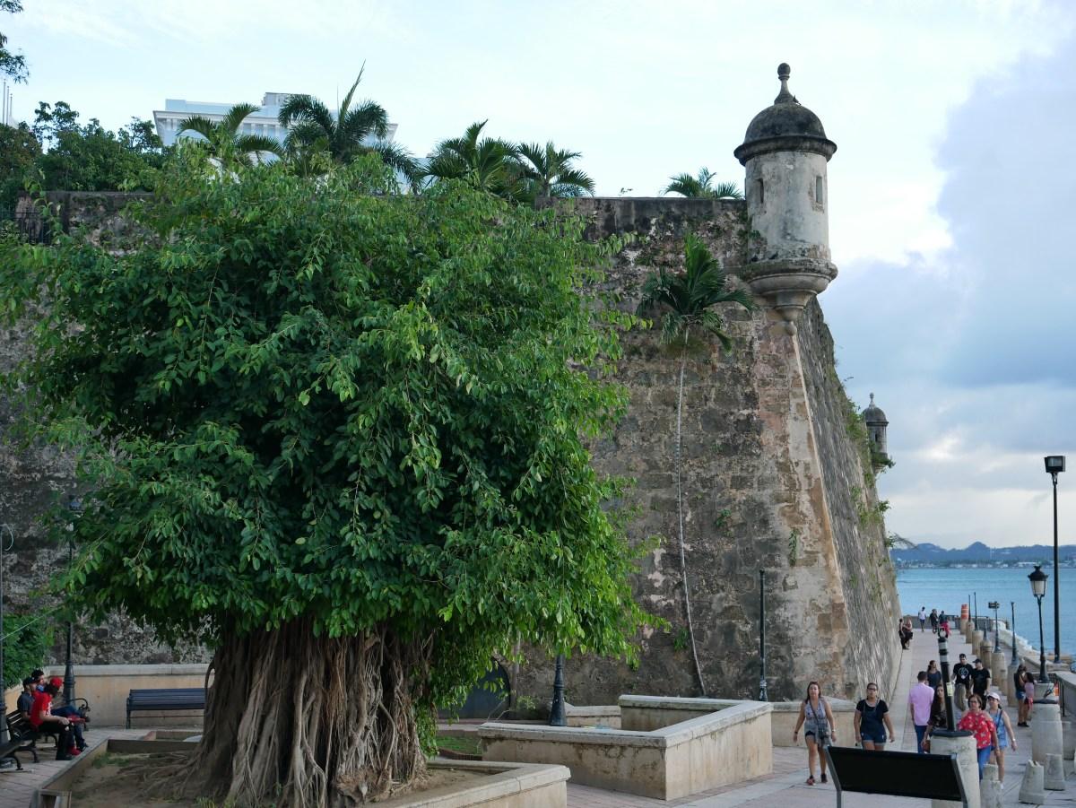 End the day by taking a stroll through Paseo de la Princesa.