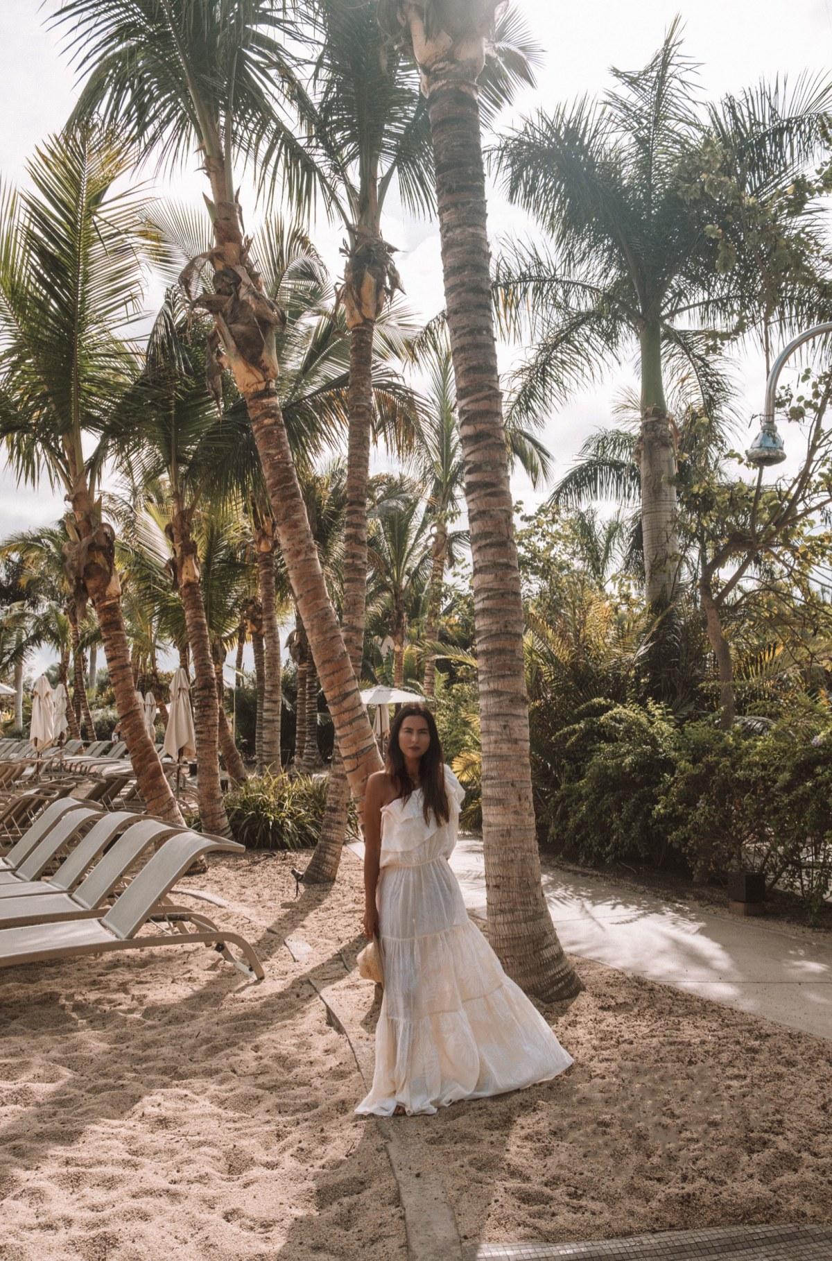 Palm trees heaven!