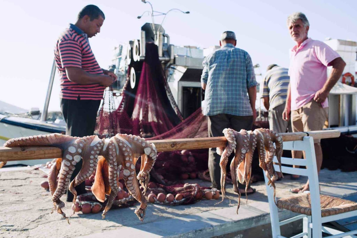 Fishermen and their haul.