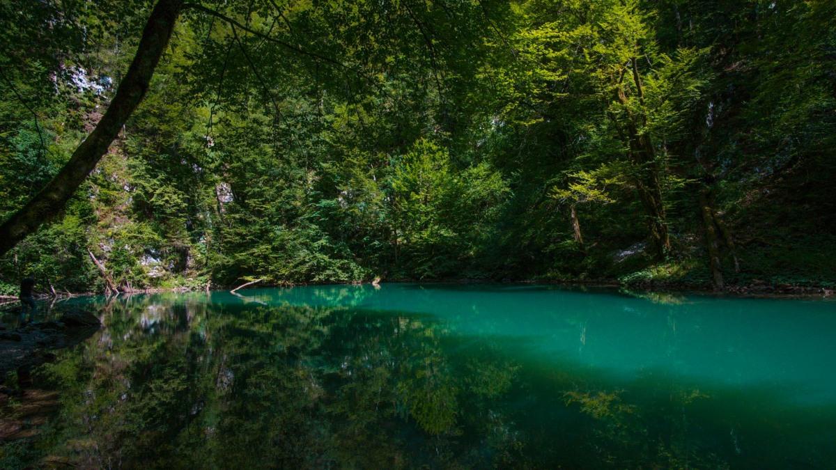 Source of river Kupa