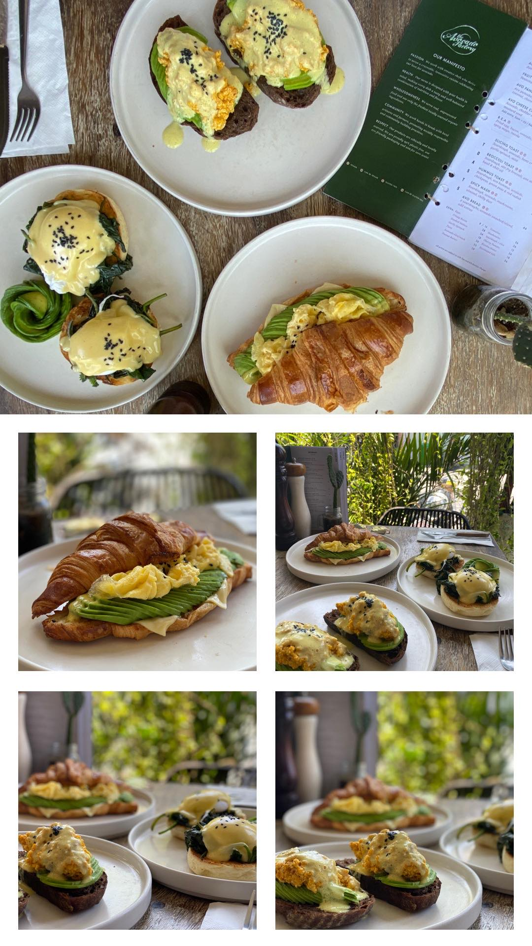 How Good is Avocado Though!?