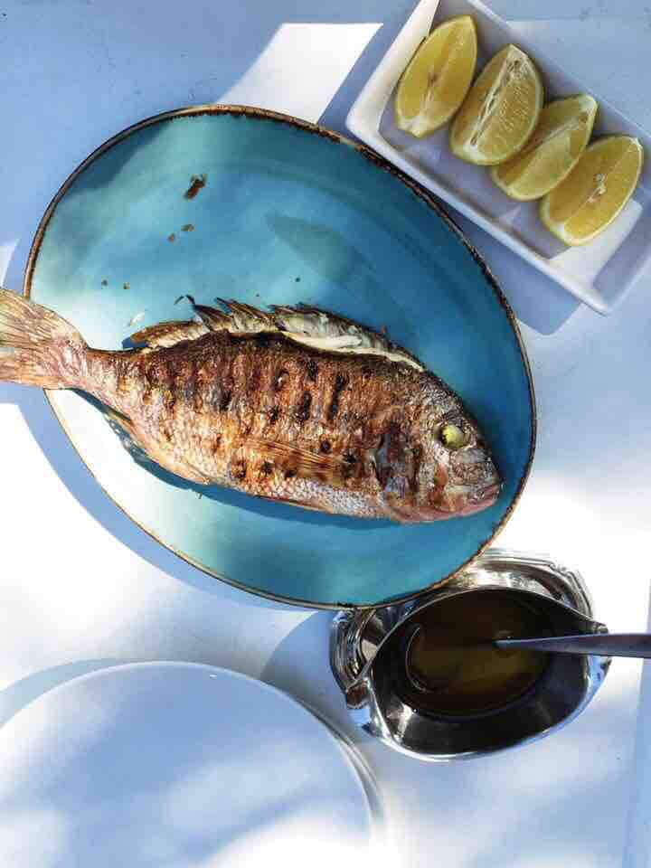 Chargrilled fresh snapper at Siparos.