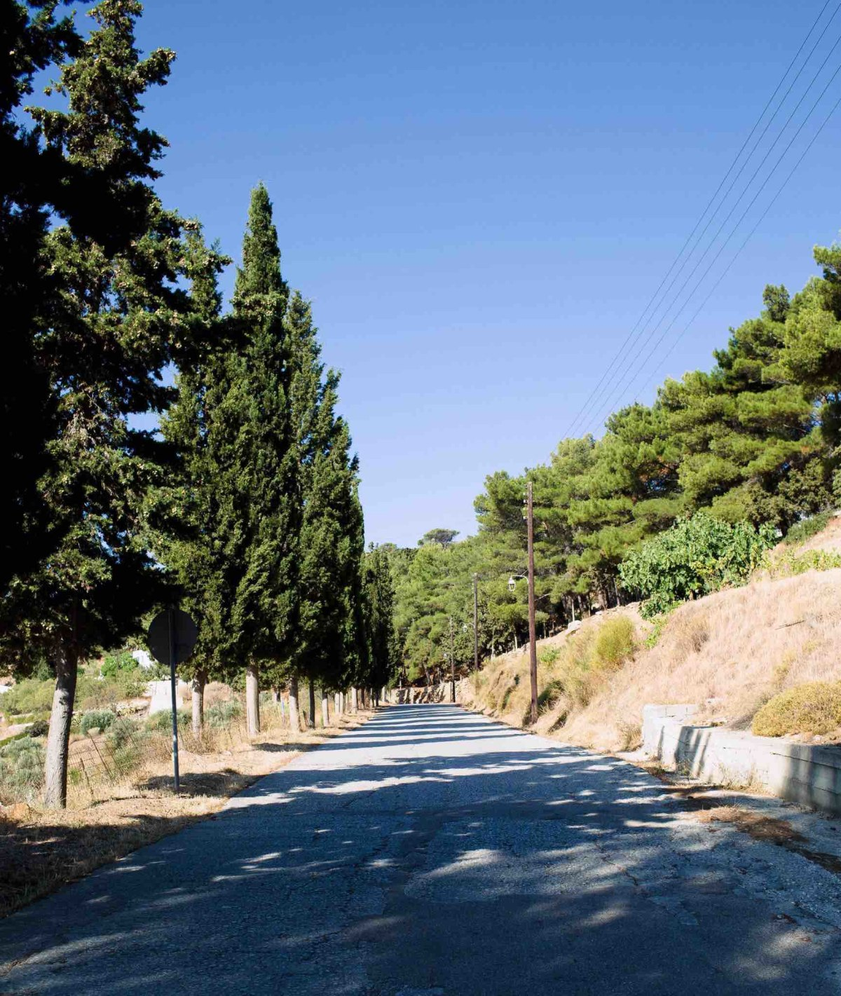 Driving the winding roads of Lefkes.