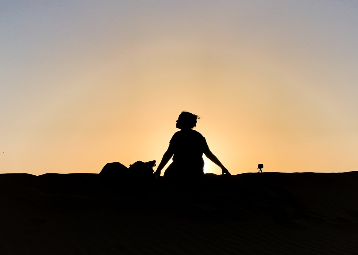 silhouette view of a traveler