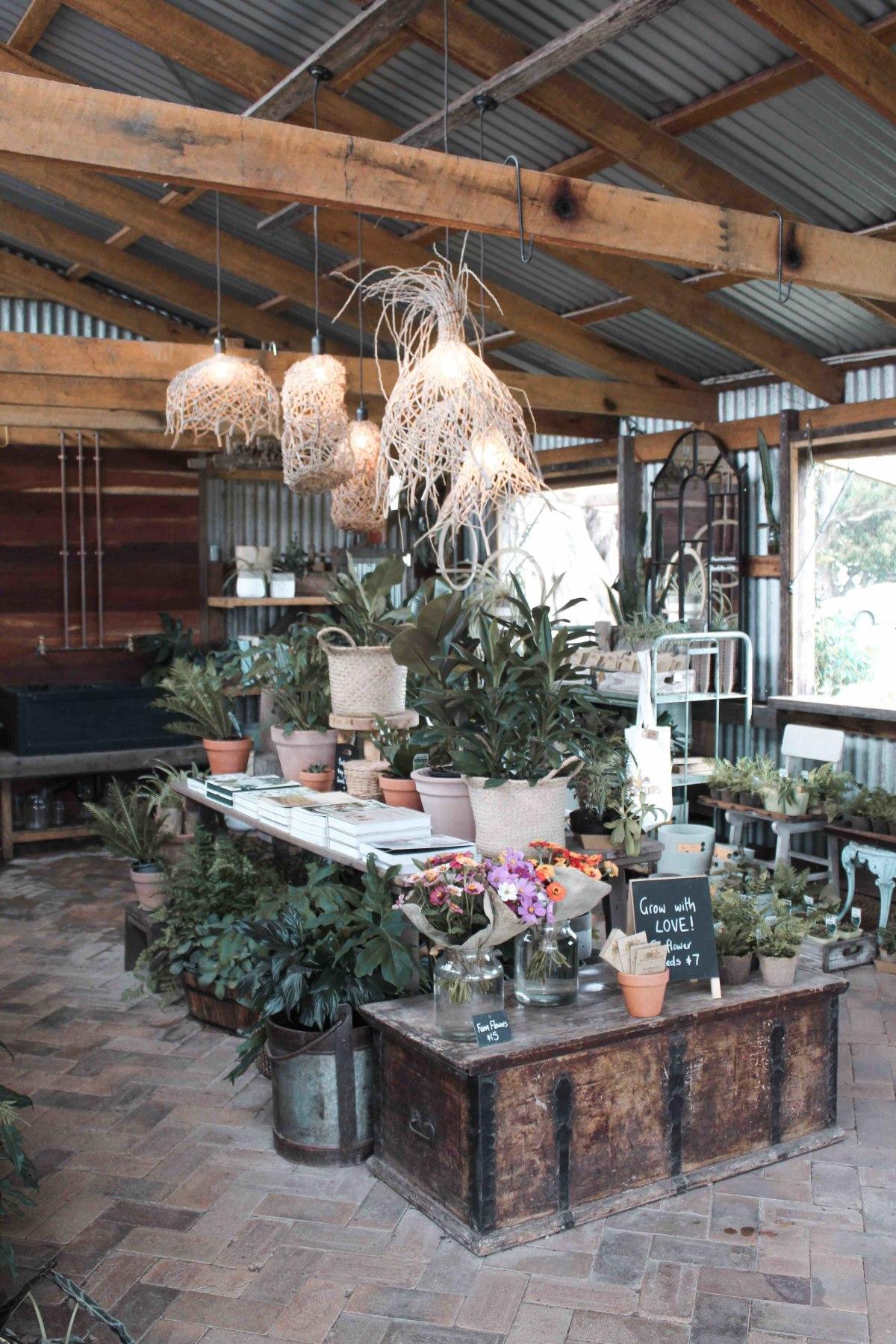 Plants shop inside of the farm
