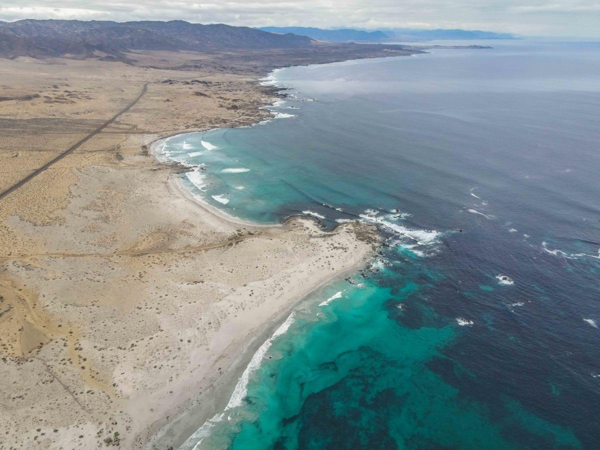 Llanos de Challe National Park (Playa blanca), Atacama, Chile