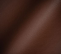 Type of leather Protected Leather