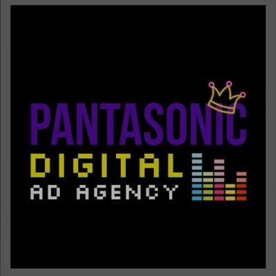 Pantasonic, LLC  image