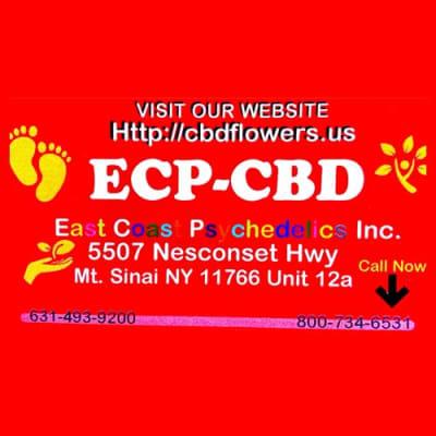 East Coast Physchedelics Inc. image