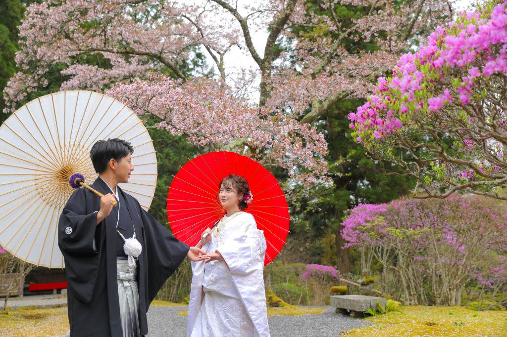 紅白の和傘と