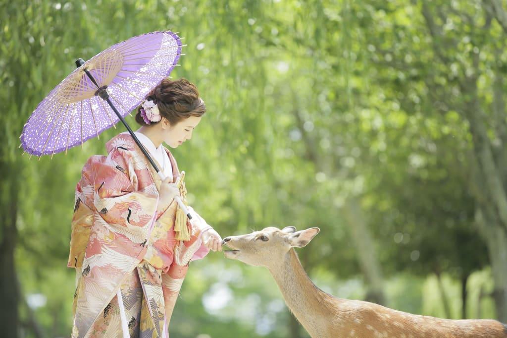 +奈良公園ロケーション撮影