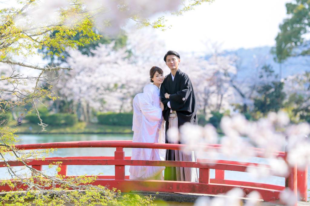 春_IMG_0365.JPG