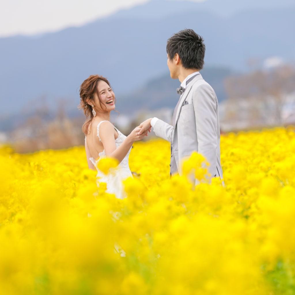早咲きの菜の花♪ロケーション