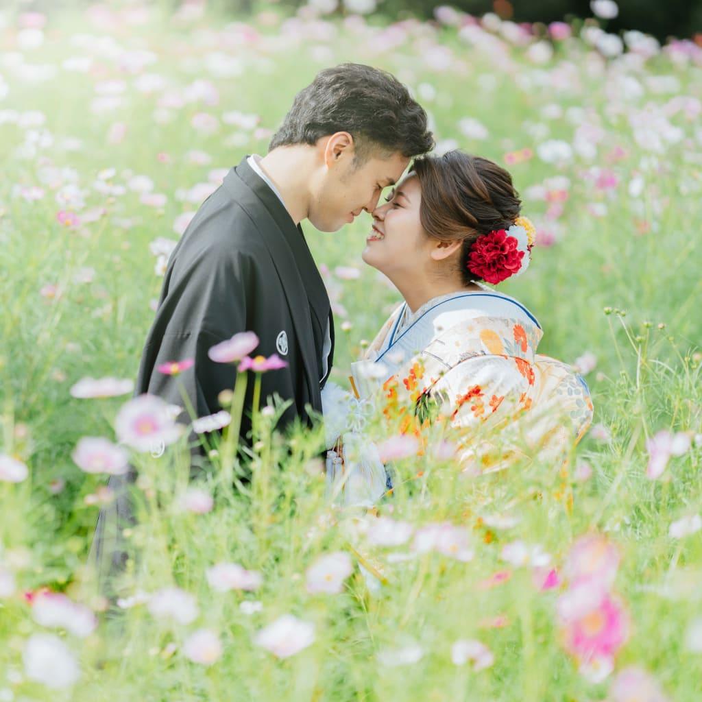昭和記念公園のコスモスvol.2