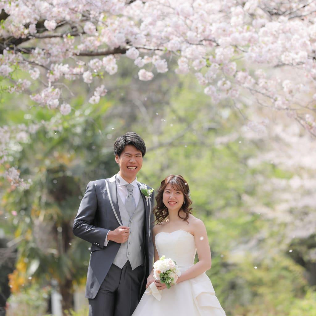桜!!!!!!!!